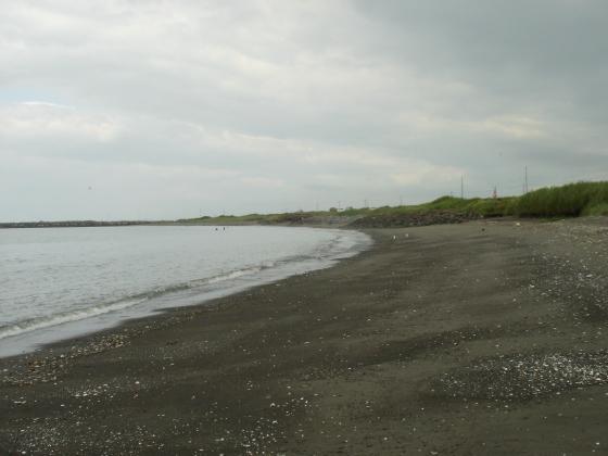 潮干狩りの場所です。あまり人はいません。