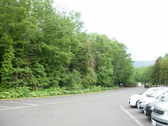 苔の洞門駐車場