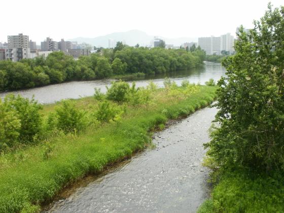 水穂大橋から撮影した豊平川です。