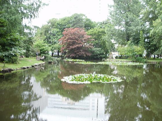 旧道庁の庭にある池です。静かです。