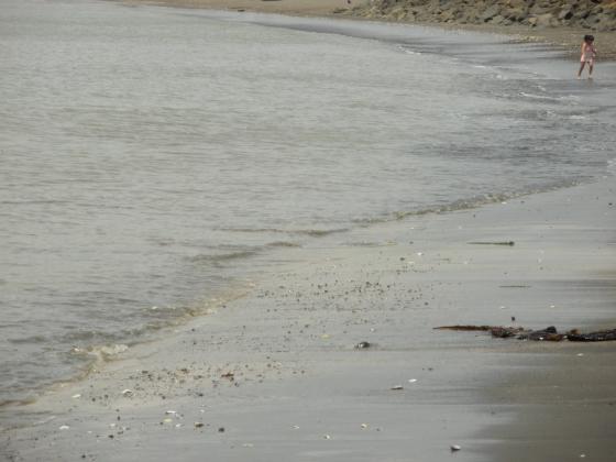 波は穏やかです。