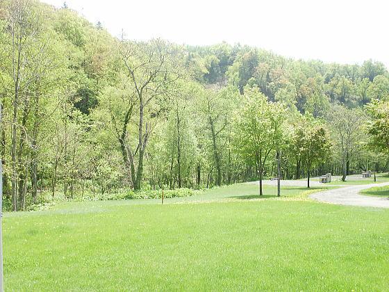 道民の森キャンプ場です
