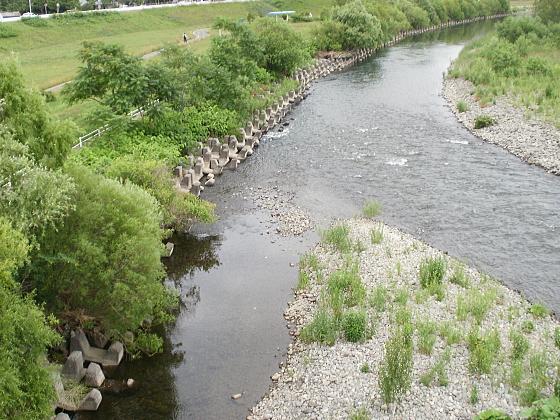 穏やかに流れる豊平川です。