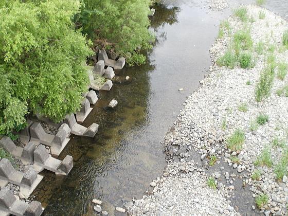 豊平川の水面は澄んでいます。