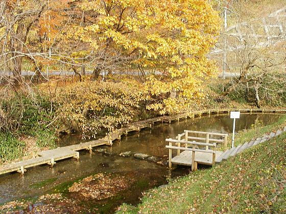 千歳市郊外にある名水ふれあい公園です。