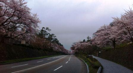 isikawamon_20120413105214.jpg
