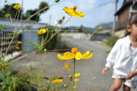 blog20111009-1_convert_20111009181805.jpg