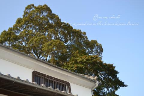 blog20111009-4_convert_20111009182028.jpg