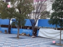 20131229京セラ昼
