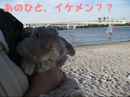 MVI_4543_0001_convert_201012151703451.jpg