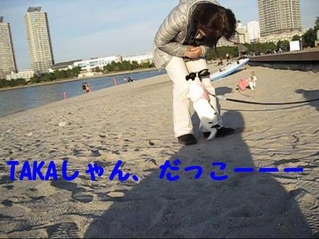 MVI_4545+001_0001_convert_201012151704341.jpg