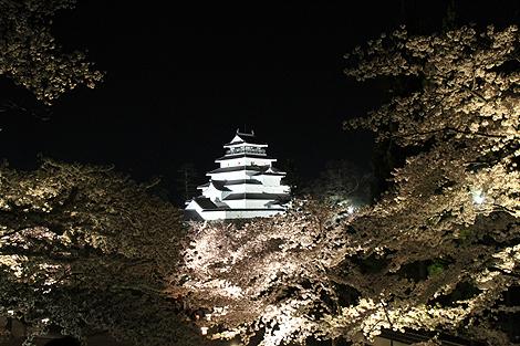 鶴ヶ城夜桜0428 005
