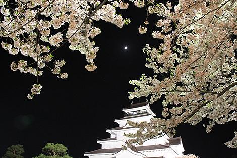 鶴ヶ城夜桜0428 003