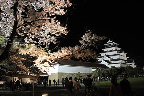 鶴ヶ城夜桜0428 006