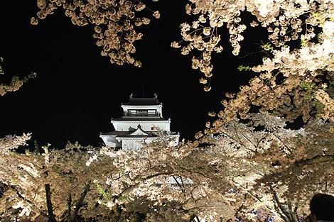 鶴ヶ城夜桜0428 014