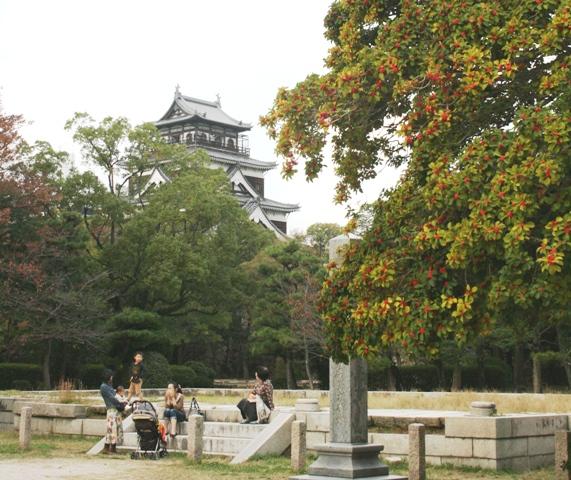 IMG_7944 広島城のモチノキ W