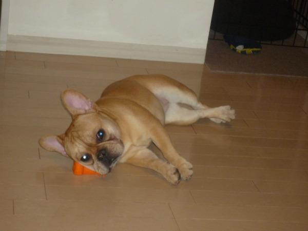 おもちゃ枕