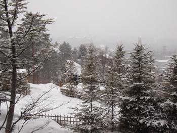 a1雪の朝