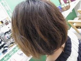 RIMG0527_20120430103043.jpg