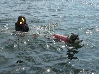 琵琶湖100912d