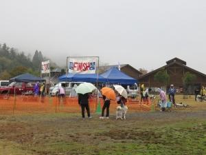 2014-11-09京都ギグ2 009