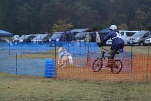 2014-11-09京都ギグレース (108)