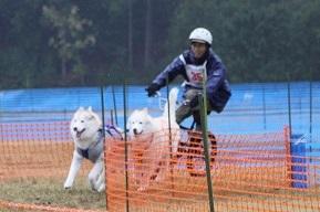 2014-11-09京都ギグレース (368)
