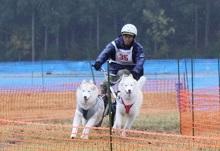 2014-11-09京都ギグレース (373)