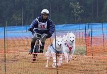 2014-11-09京都ギグレース (377)