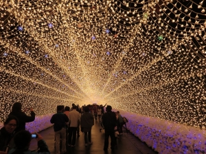 2014-11-09京都ギグ2 122
