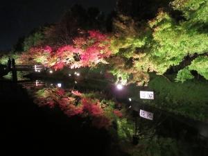 2014-11-09京都ギグ2 143