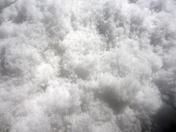 綿菓子みたいな雪