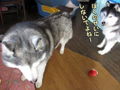 犯犬とポトフ