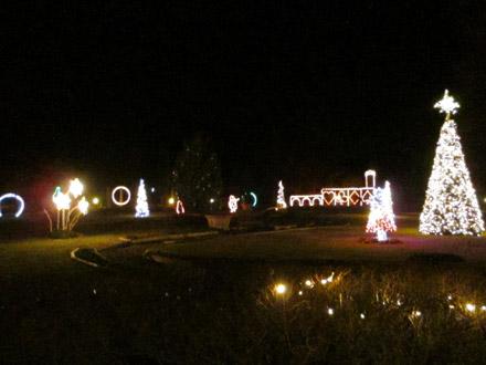 夜のドギーパーク