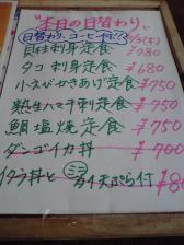 P1000050_20100603232656.jpg