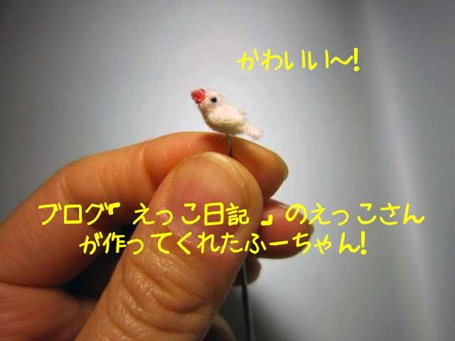 えっこ日記ふーちゃん