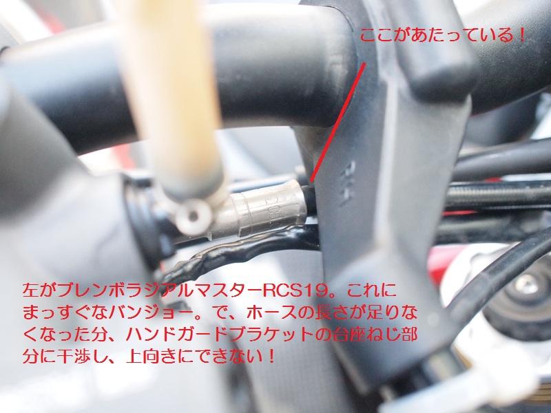 P3208290_R.jpg