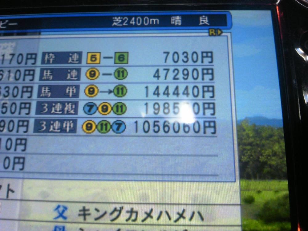 DSC_0230_convert_20130217161117.jpg