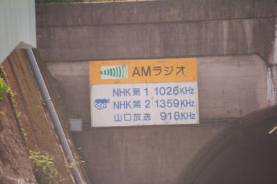 1105216.jpg