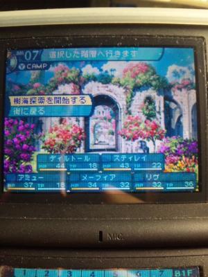 SH3D0124_convert_20110205141244.jpg