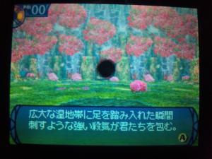 SH3D0163_convert_20110210220226.jpg