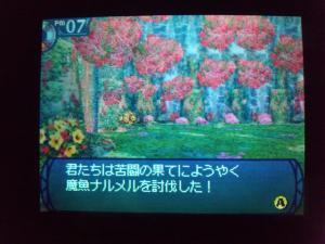 SH3D0182_convert_20110213182342.jpg