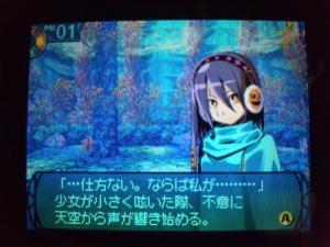 SH3D0238_convert_20110219210727.jpg