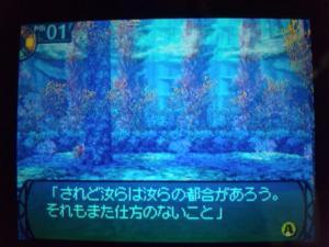 SH3D0241_convert_20110219210807.jpg