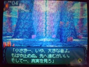 SH3D0282_convert_20110219211755.jpg