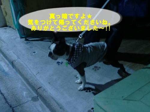 2011_0903_191842-CIMG6617.jpg
