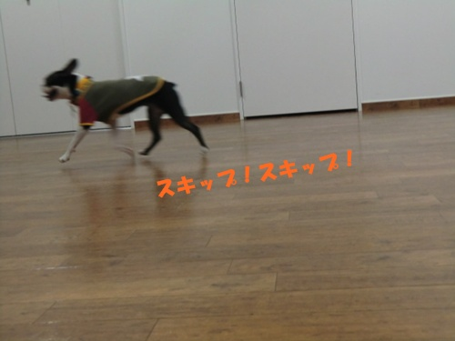 2011_0904_154851-CIMG6631.jpg