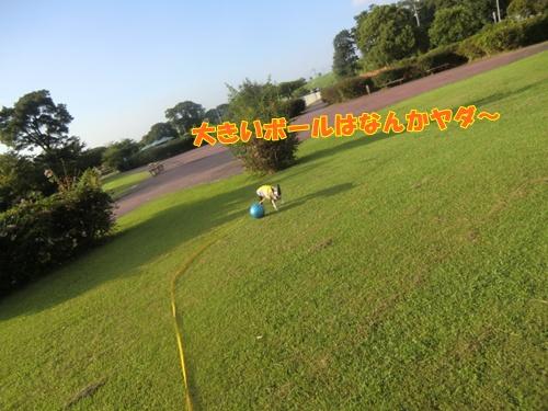 2011_0910_163844-CIMG6694.jpg