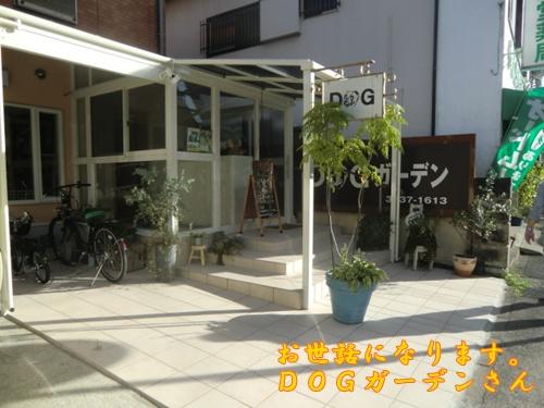 2011_0917_160303-CIMG6731.jpg