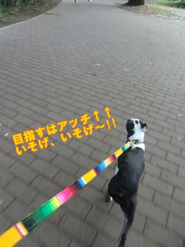 2011_0917_163018-CIMG6734.jpg